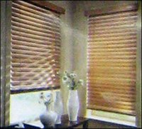 Venetian Blinds
