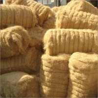 Coir Fibre