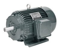 Y Series Three Phase Induction Motor