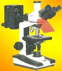Fluorescent Microscope