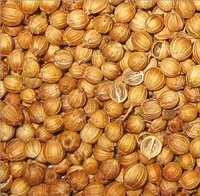 Coriander Seeds-Whole Beans