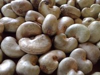 Natural Raw Cashew Nuts