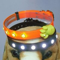 Lighting Dog Collar