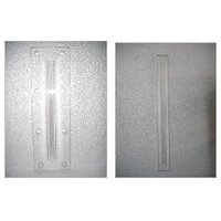 Prismatic Gauge Glass