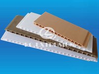 PVC Ceiling Panel Mould