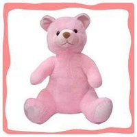 Pink Color Teddies