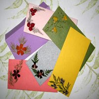 Gift Envelope