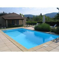 Swimming Pool Filter