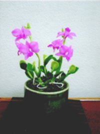 Pink Mini Orchid Clay Flowers