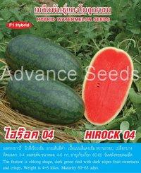 Hirock 04 Watermelon Seed