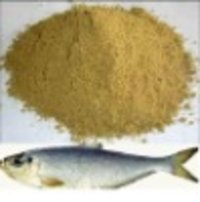 Protein Fish Meal 
