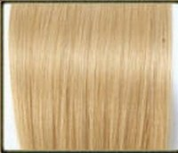 Indian/Russian Remy Hair Weft /Weaving
