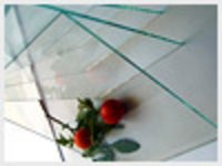 Clear And Tinted Sheet Glass