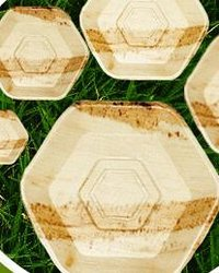 Hexagonal Small Plates