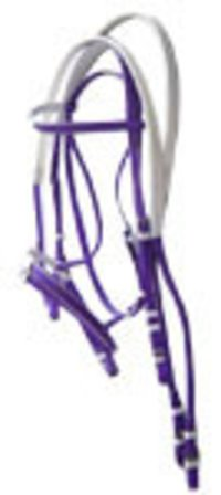 Biothene Bridles