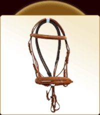 Horse English Bridle
