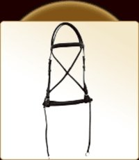 Sleek English Bridle