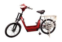 Lithium Battery Electric Bike
