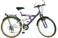 Shockbike