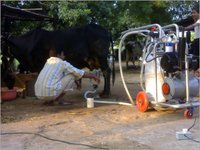 Automatic Milking Machinery