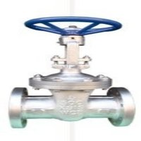 Ball And Globe Valves