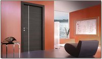 Sleek Look Doors
