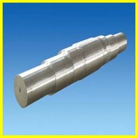 Stainless Steel Forging Shaft