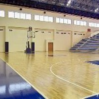PVC Indoor Sports Flooring