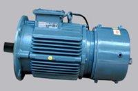 Flange Brake Motor