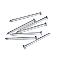 Stainless Steel Plain Wire Nails