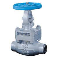 Class 300 Globe Valves