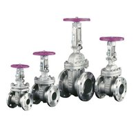 Bolted Design Stainless Steel Gate Valves