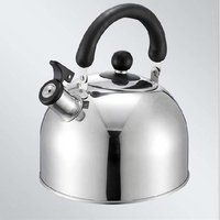 Stainless Steel Kettles