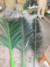 Camouflaged Palm Tree Leaves