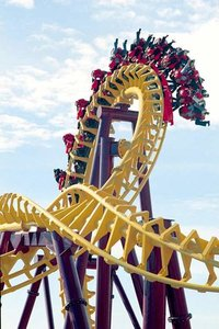 Large-Sized Suspension Type Roller Coaster
