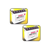 Exide-Inva Tubular Battery