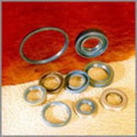 Oil Seals
