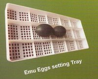 Emu Egg Setting Trays