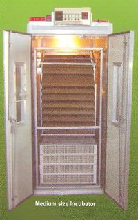 Medium Size Poultry Incubators
