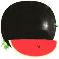 Black Diamond Watermelon Seeds