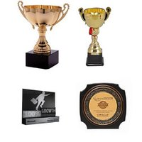 Trophies And Awards