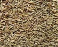 Cumin Seeds