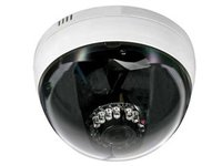 Dome IP Cameras