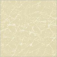 Warsaw Ceramic Vitrified Tiles