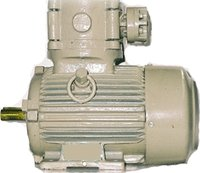 Foot Mounted Flame Proof Electric Motor