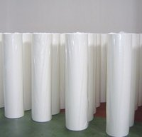 Pp Non Woven Treated Fabric