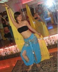 Ladies Fancy Belly Dance Costumes