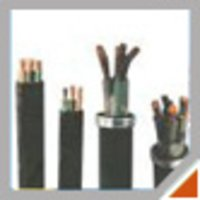 Elastomeric / Rubber Cables