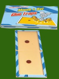 Arbuda Eco Size Glue Traps