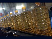 Edible And Biodiesel Oil